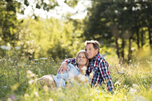Senior couple relaxing together on a meadow - HAPF01246