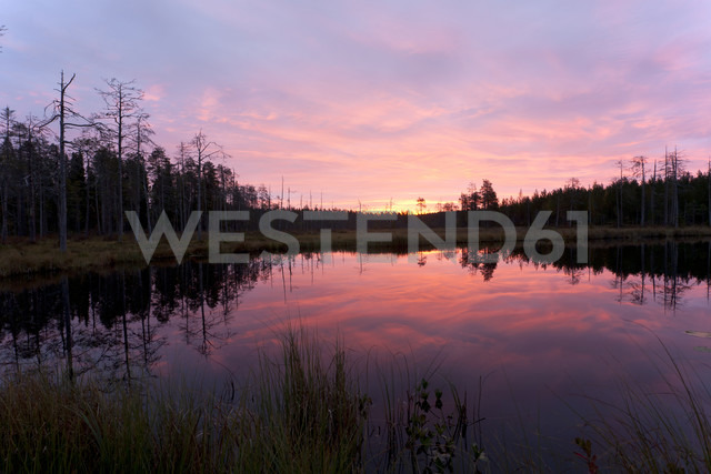 Finland, North Karelia, Kuhmo, lake in the Taiga at dawn - ZCF00452 - Christian Zappel/Westend61