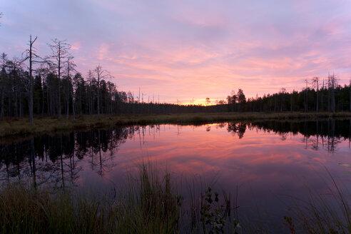 Finland, North Karelia, Kuhmo, lake in the Taiga at dawn - ZCF00452