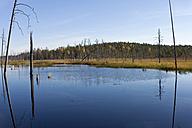 Finland, North Karelia, Kuhmo, lake in the Taiga - ZCF00454