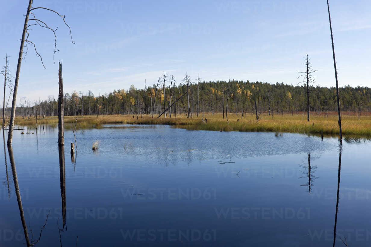 Finland, North Karelia, Kuhmo, lake in the Taiga - ZCF00454 - Christian Zappel/Westend61