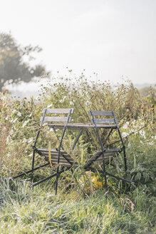 Cottage garden - KNSF00763