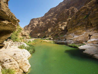Oman, Wadi Tiwi - AMF05185
