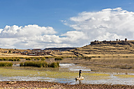 Peru, Andes, cemetery of Sillustani at Lake Umayo and fisherman on boat made of giant bulrush - FO08671