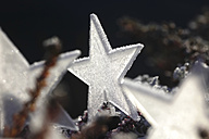 Frost-covered star - JTF00799