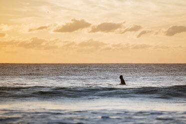 Surfer in the water at sunset - KIJF01104