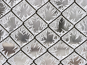 Frost on a wire mesh fence, close-up - EJWF00824