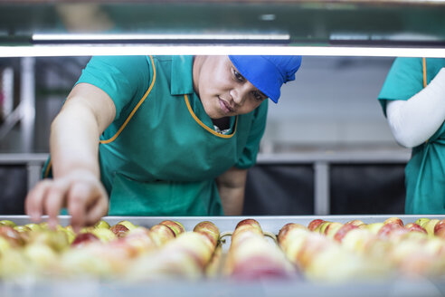 Female worker checking apples on conveyor belt in factory - ZEF12419