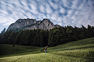Austria, Mondsee, back view of young man with torch on a meadow at moonlight - WVF00787