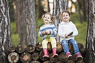 Two smiling girls sitting on stack of wood in forest - HAPF01297