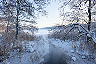 Germany, Kisslegg, frozen Argensee - SIEF07274