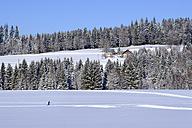 Germany, Maierhoefen, cross-country skier in winter landscape - SIEF07280