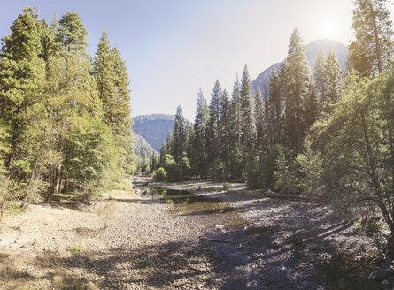 USA, California, Yosemite National Park, scenic - EPF00307