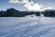 Germany, Nesselwang, winter landscape - MYF01864