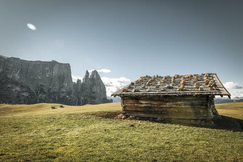 Italy, South Tyrol, Seiser Alm, barn and Schlern - EGBF00207