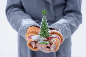 Teenage girl holding little Christmas tree - LBF01551