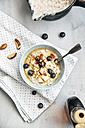 Vegan coconut milk porridge with blueberries, apple, brazil nuts and cinnamon - IPF00356