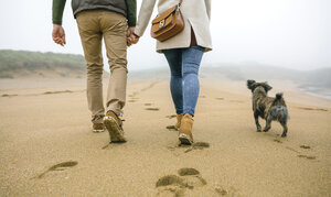Low section of couple walking on the beach with dog in winter - DAPF00561
