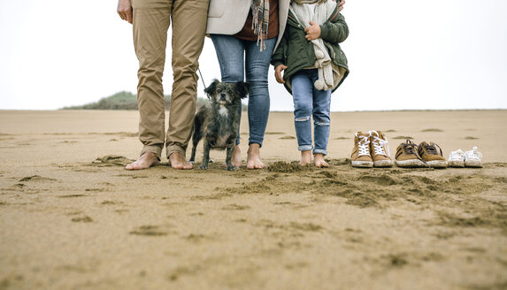 Low section of family with dog standing barefoot on the beach - DAPF00582