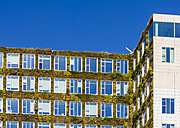 Netherlands, Amsterdam, office building with acade greenery - WDF03875