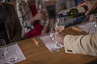 Wine degustation - ZEF12751