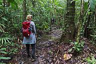 Peru, Amazon basin, Manu National Park, tourist hiking through rain forest - FOF08830