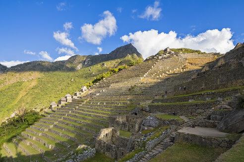Peru, Andes, Urubamba Valley, Machu Picchu, terraces with mountain Machu Picchu - FOF08842