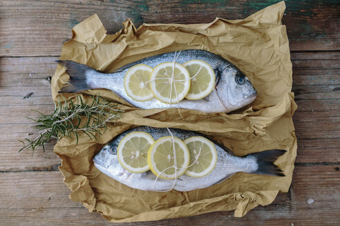 Two Sea Bream on a baking paper with lemon and rosemary - GIOF01859