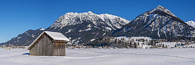 Germany, Oberstdorf, Lorettowiesen, mountainscape in winter - WGF01053