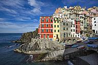 Italy, Cinque Terre, Riomaggiore - YRF00151