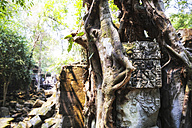 Cambodia, Angkor, Beng Mealea Temple - REAF00183