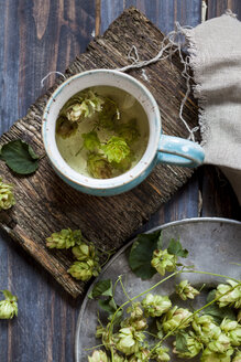 Hop tea in tea cup - SBDF03156