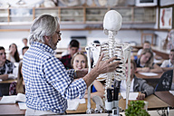 Teacher with anatomy model and students in class - ZEF12817
