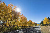 USA, Wyoming, Rocky Mountains, Grand Teton National Park, John D. Rockefeller Jr. Parkway with aspens in autumn - FOF08878