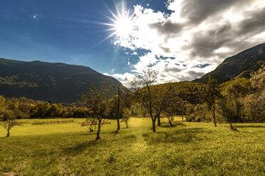 Slovenia, Bovec, Triglav National Park, Kanin Valley in autumn - CSTF01257