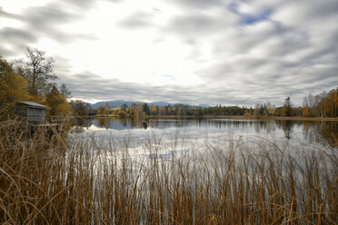 Germany, Allgaeu, lake with water reflection of clouds in autumn - FDF00217
