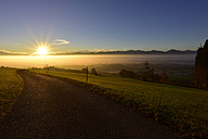 Germany, Allgaeu, empty country road at sunrise - FDF00220