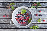 Tin plate of raspsberries and blackberries - GWF04993