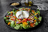 Plate of tomato salad with Burrata - SARF03194