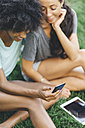 Two best friends sitting on a meadow of a park looking at cell phone - GIOF01996