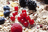 Granola and various wild berries, close-up - CSF27924