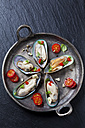 Green mussels with tomatoes, capsicum and garlic, in iron pan - CSF27949