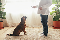 Little girl training her dog to sit at home - RTBF00698