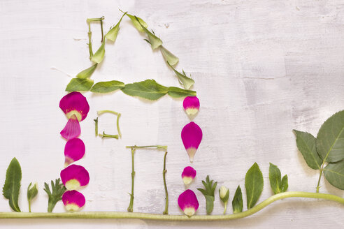 House built of petals, leaves and stems - CMF00655