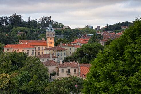 Portugal, Sintra, Moorish Castle and Pena Palace - DSGF01529