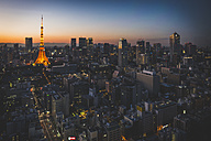 Japan, Tokyo, skyline with illuminated Tokyo Tower as seen from World Trade Center - KEBF00527