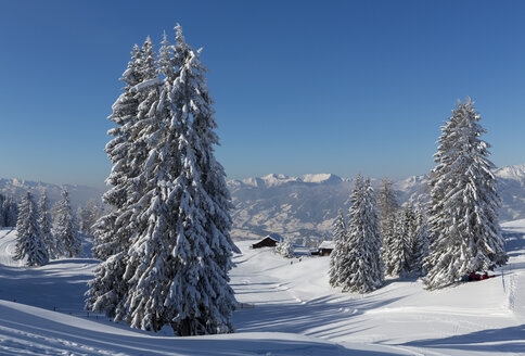 Austria, St Johann im Pongau, snow-covered winter landscape - MABF00447