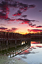 Spain, Daimiel, sunset at Tablas de Daimiel National Park - DSGF01573