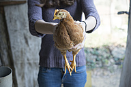 Woman holding a chicken - SKCF00267