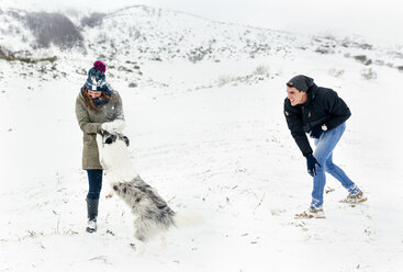 Young couple playing with their dog in the snow - MGOF03034